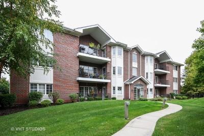 Palos Heights Condo/Townhouse For Sale: 13079 Laurel Glen Court #203