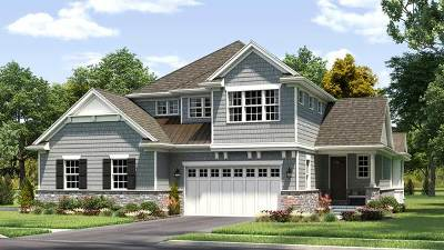 Hinsdale Single Family Home For Sale: 507 Hannah Lane