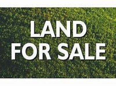Residential Lots & Land For Sale: 1019 North Avers Avenue
