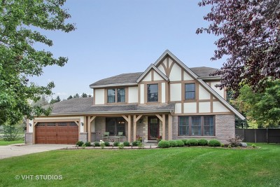 Libertyville Single Family Home For Sale: 1102 Abbey Court
