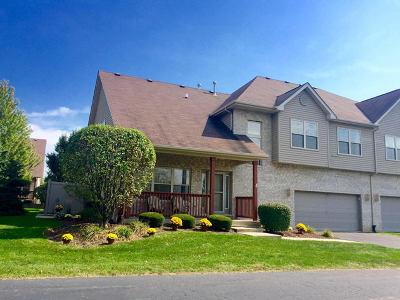 Lockport Condo/Townhouse For Sale: 1244 Lacoma Drive