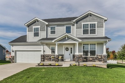 Single Family Home For Sale: 800 Kathi Drive