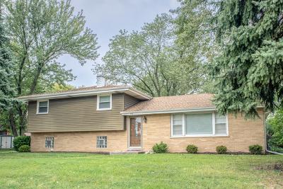 Roselle Single Family Home For Sale: 556 Seward Street