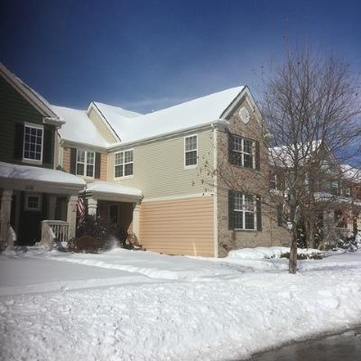 Elgin Single Family Home For Sale: 276 Longview Drive
