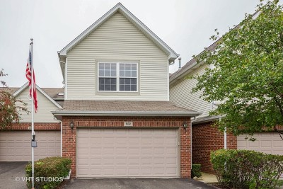 Bolingbrook Condo/Townhouse For Sale: 502 Goodwin Drive