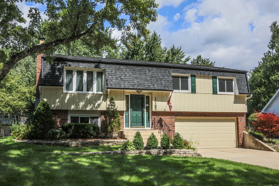Wheaton Single Family Home For Sale: 1145 Sussex Lane
