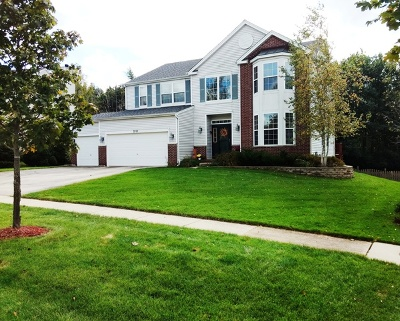 Carpentersville Single Family Home For Sale: 3707 Rolling Hills Road