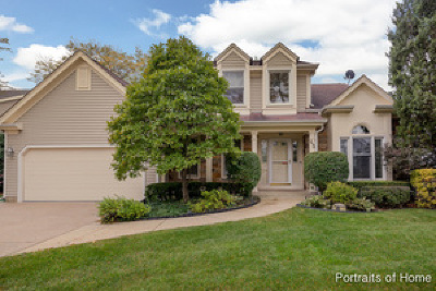 Buffalo Grove Single Family Home For Sale: 45 Newfield Drive