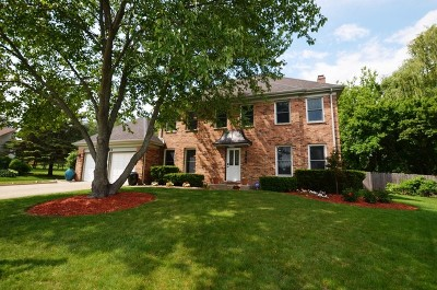 Libertyville Single Family Home For Sale: 1344 Trinity Place