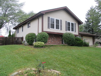 Bloomingdale Single Family Home For Sale: 244 Strathmore Court