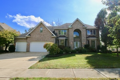 Woodridge Single Family Home For Sale: 921 Internationale Parkway