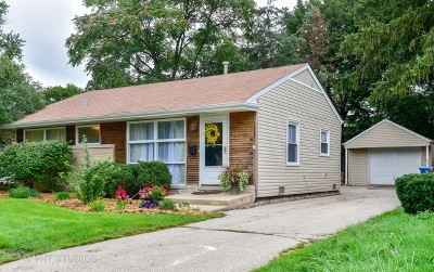 Downers Grove Single Family Home For Sale: 4229 Main Street