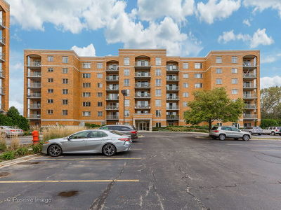 Niles Condo/Townhouse For Sale: 6815 North Milwaukee Avenue #702