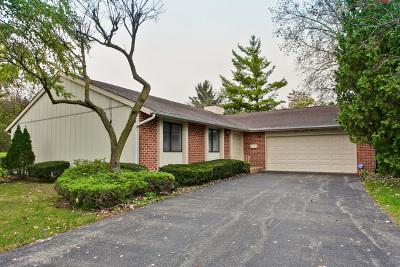 Roselle Single Family Home For Sale: 771 East Devon Avenue
