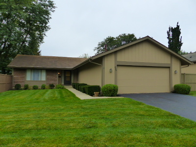 Roselle Single Family Home For Sale: 533 Bryce Trail