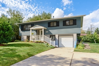 Hoffman Estates Single Family Home For Sale: 1450 Gentry Road