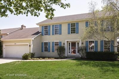 Arlington Heights Single Family Home For Sale: 209 East Brett Court