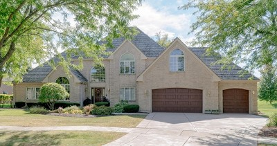 Naperville Single Family Home For Sale: 2272 Sable Oaks Drive