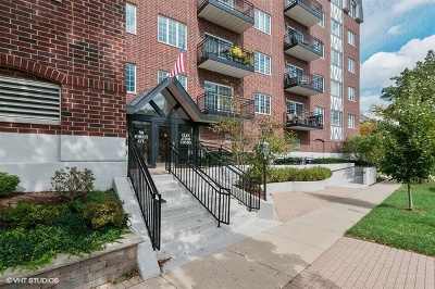 Glen Ellyn Condo/Townhouse For Sale: 501 Forest Avenue #407