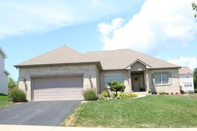North Aurora Single Family Home For Sale: 908 Fair Meadow Street