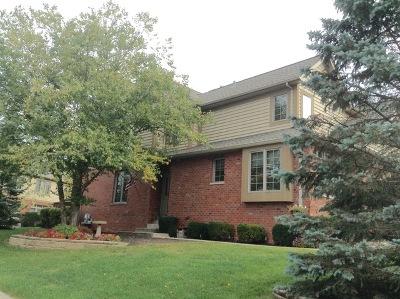 New Lenox Condo/Townhouse Contingent: 3242 Lightning Court