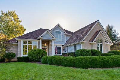 Antioch Single Family Home For Sale: 1421 Eagle Ridge Drive