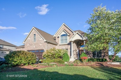 Bolingbrook Single Family Home For Sale: 1190 Washington Street