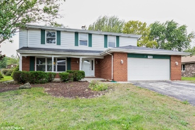 Orland Park Single Family Home For Sale: 13544 Lincolnshire Drive