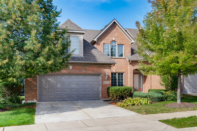 Naperville Condo/Townhouse For Sale: 1027 Catherine Court
