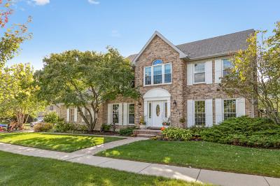 Hoffman Estates Single Family Home For Sale: 1618 Castaway Court