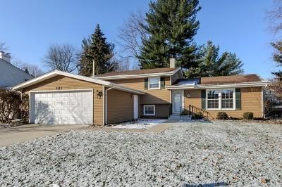 Naperville Single Family Home For Sale: 1813 Killdeer Drive