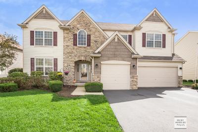 Oswego Single Family Home For Sale: 254 Willington Way