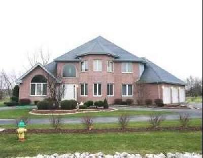 Crete Single Family Home For Sale: 3063 East Poplar Lane
