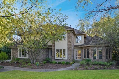 Libertyville Single Family Home For Sale: 309 Camelot Lane