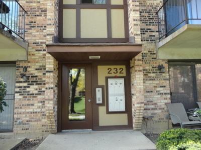 Carol Stream Condo/Townhouse For Sale: 232 Klein Creek Court #6F
