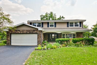 Palatine Single Family Home For Sale: 611 East Princeton Street