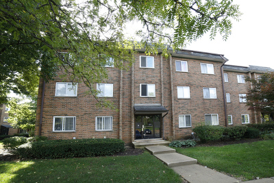 Schaumburg Condo/Townhouse For Sale: 929 Buccaneer Drive #20-02