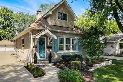 Downers Grove Single Family Home For Sale: 4132 Elm Street