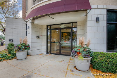 Du Page County Condo/Townhouse New: 586 Crescent Boulevard #307