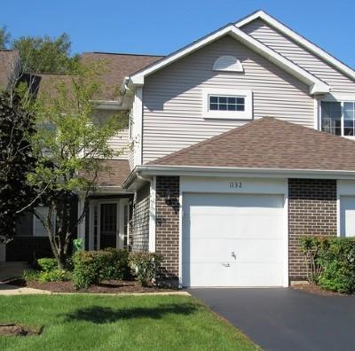 Lombard Condo/Townhouse For Sale: 1132 East Addison Avenue