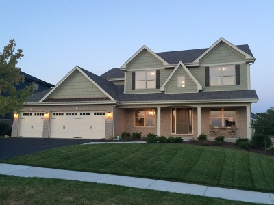 Lockport Single Family Home For Sale: 16455 West Turnberry Circle