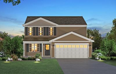 Oswego Single Family Home For Sale: 246 Liszka Lane