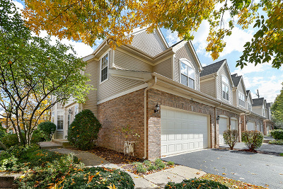 Lisle Condo/Townhouse For Sale: 837 McKenzie Station Drive