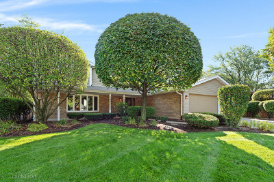 Palos Hills Single Family Home For Sale: 10215 South 87th Court