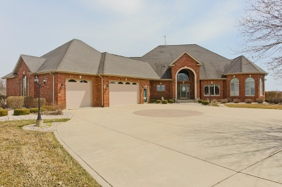 Frankfort Single Family Home For Sale: 7623a West Stuenkel Road