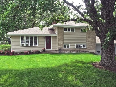 Lake Zurich Single Family Home For Sale: 250 Vista Road