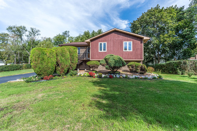 Glen Ellyn Single Family Home For Sale: 22w244 2nd Street