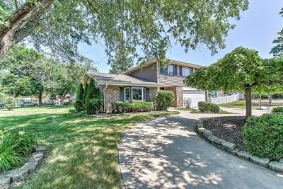 Schaumburg Single Family Home For Sale: 400 Ashwood Drive