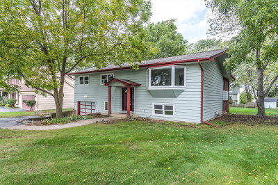 Glen Ellyn Single Family Home For Sale: 136 Geneva Road