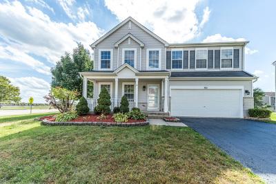 Romeoville Single Family Home For Sale: 301 Dartmoor Avenue